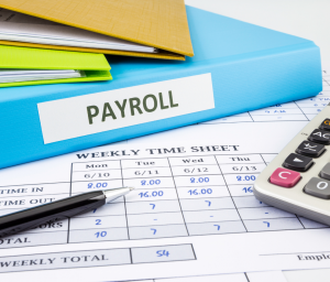 Payroll Administrator Level 3 Standard
