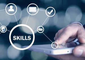 Digital Skills for Work