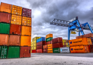 Port Operative Level 2 Standard